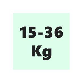 15-36 Kg